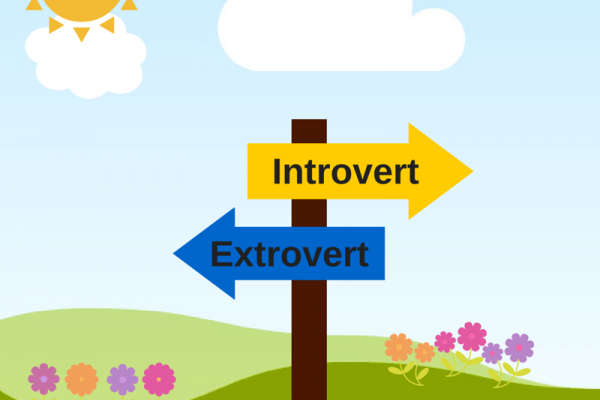 The Introverted Millennial