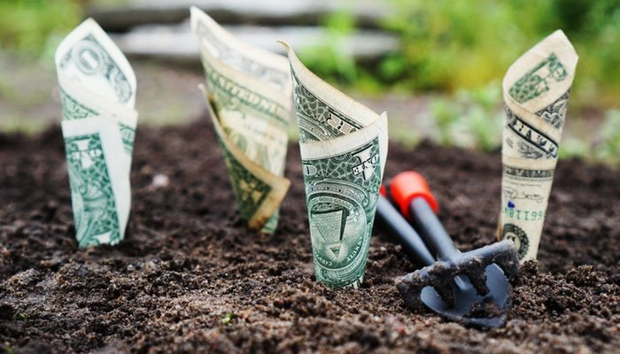 Save Money & The Planet With These Home Tips